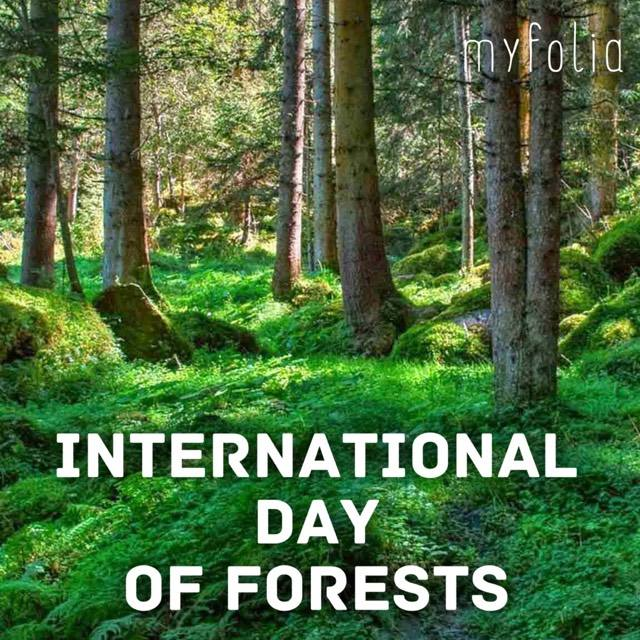 Giornata internazionale delle foreste - International Day of Forests